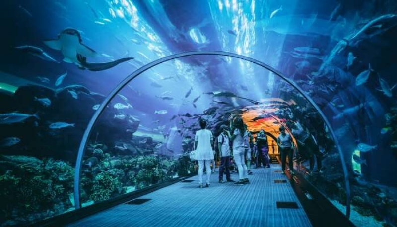 Things To Do in Dubai -Events, Activities & Places to Visit
